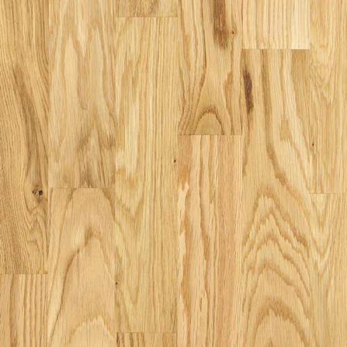 Паркетная доска Focus Floor Дуб Либецио Глянцевый